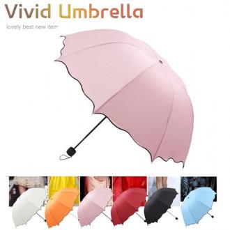 [파우치나라] 핫 컬러 * 비비드* 4단 우산 6종 (8k)