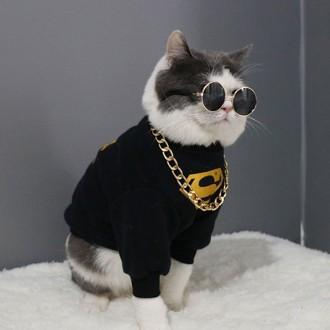 펫글라스 애완동물 선글라스