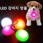 상상홀릭 LED 강아지 방울 애완견 발광 산책 램프 등