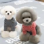 [펫스타일] 스트라이프 긴팔티/강아지티/애견의류