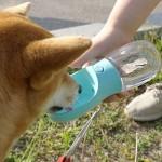 휴대용 원터치플러스 강아지 물통 애견 텀블러